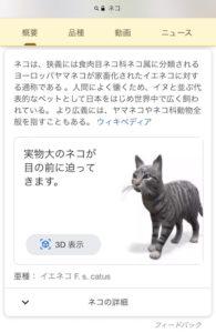 ネコを検索してみましょう