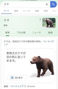 クマを検索