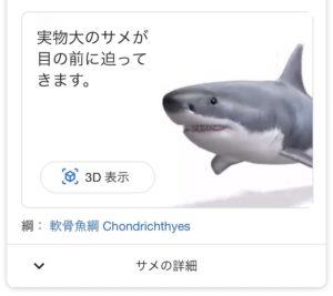 サメを検索